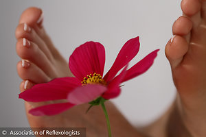 Home. AOR feet pink flower